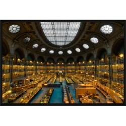 La salle ovale - Bibliothèque Nationale de France © Stéphanie Benjamin