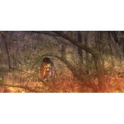 La Dame de la Forêt © Max Parisot du Lyaumont