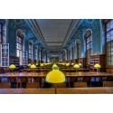 Location exposition Les livres et leur architecture © Stéphanie Benjamin