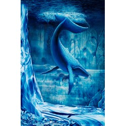 Baleine - Personnalité n°6