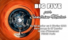BIG FIVE, par Sandrine Mulas